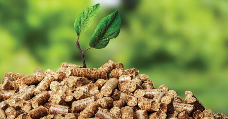 Drevené pelety ako biopalivo pre alternatívne kúrenie